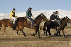 Long Horse Riding Tour - Lago Argentino Packages