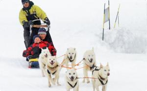 Sled Dogs in Ushuaia 1